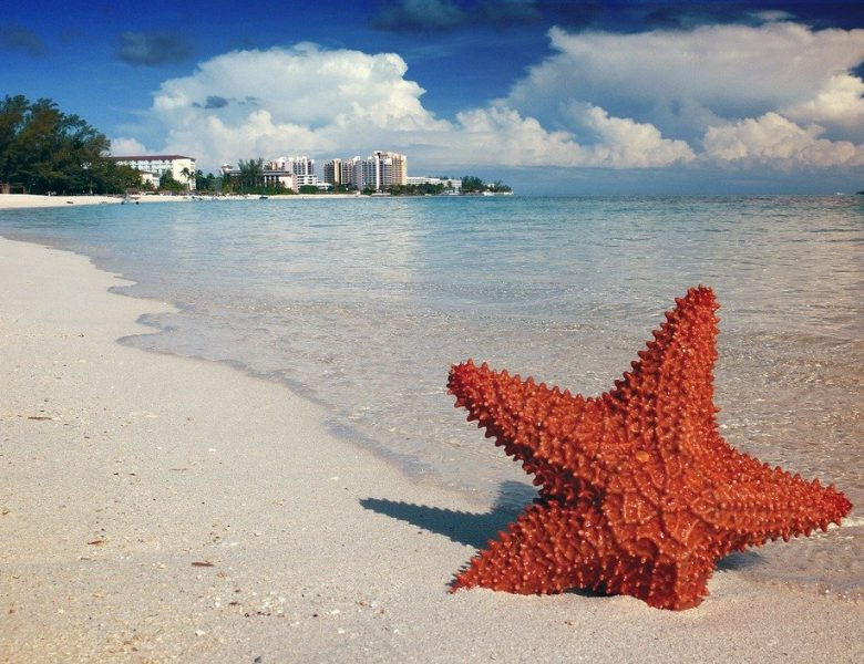 Partir aux Bahamas, comment faire pour un voyage pas cheret agréable?