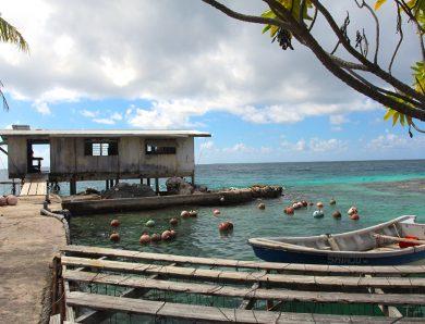 Polynésie française: les meilleures activités à Manihi