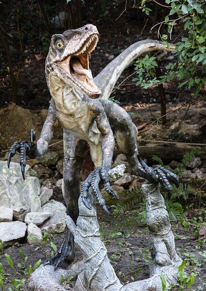 Développer l'imagination grâce à une figurine de vélociraptor